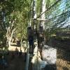 Parque Arborismo, Munébrega